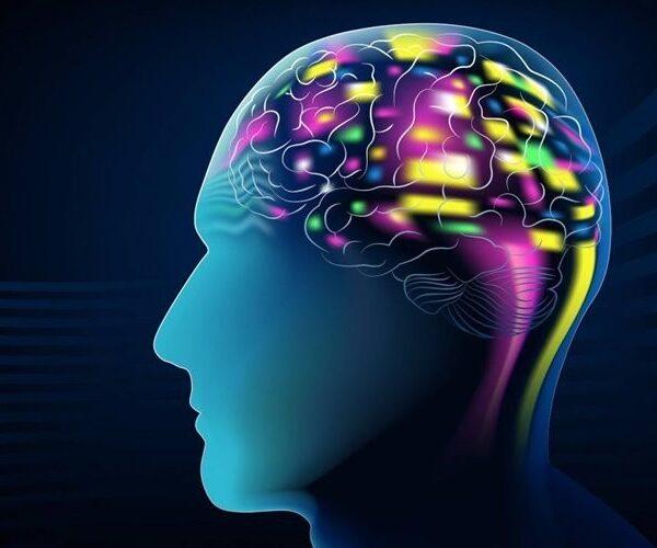 کامپیوتری با پیشبینی افکار فرد، از آنها تصویرسازی میکند